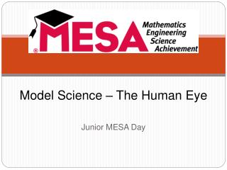 Model Science   The Human Eye