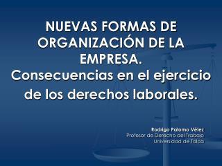 NUEVAS FORMAS DE ORGANIZACI N DE LA EMPRESA.  Consecuencias en el ejercicio de los derechos laborales.