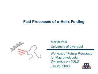 Fast Processes of a-Helix Folding