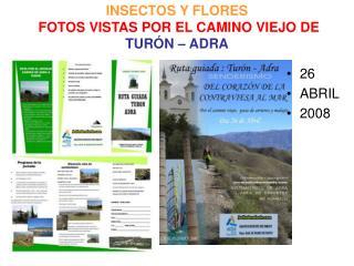 INSECTOS Y FLORES  FOTOS VISTAS POR EL CAMINO VIEJO DE   TUR N   ADRA