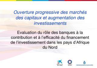 Evaluation du r le des banques   la contribution et   l efficacit  du financement de l investissement dans les pays d Af