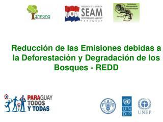 Reducci n de las Emisiones debidas a la Deforestaci n y Degradaci n de los Bosques - REDD