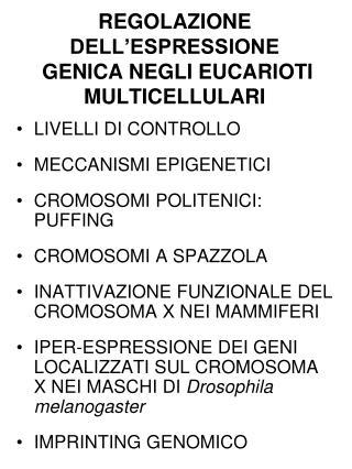 REGOLAZIONE DELL ESPRESSIONE  GENICA NEGLI EUCARIOTI MULTICELLULARI
