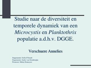 Studie naar de diversiteit en temporele dynamiek van een  Microcystis en Planktothrix populatie a.d.h.v. DGGE.  Verschue