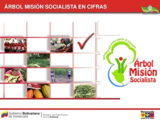 RBOL MISI N SOCIALISTA EN CIFRAS