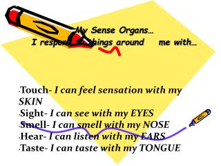 My Sense Organs  I respond to things around    me with