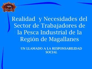 Realidad  y Necesidades del  Sector de Trabajadores de la Pesca Industrial de la Regi n de Magallanes