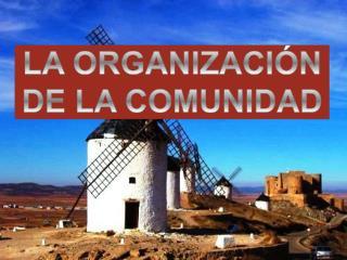 LA ORGANIZACI N DE LA COMUNIDAD