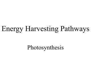 Energy Harvesting Pathways