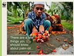 There are a few things you should know about palm oil...