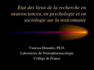 Etat des lieux de la recherche en neurosciences, en psychologie et en sociologie sur la toxicomanie