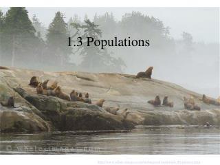 1.3 Populations