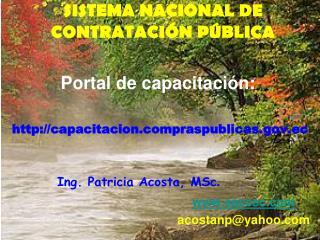 SISTEMA NACIONAL DE CONTRATACI N P BLICA