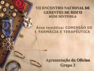 VII ENCONTRO NACIONAL DE GERENTES DE RISCO REDE SENTINELA