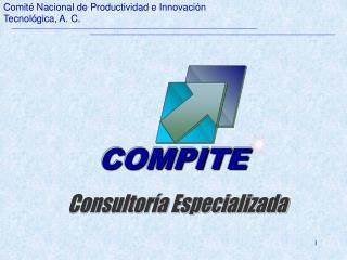 Comit  Nacional de Productividad e Innovaci n Tecnol gica, A. C.