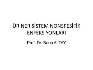 RINER SISTEM NONSPESIFIK ENFEKSIYONLARI