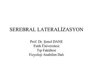 SEREBRAL LATERALIZASYON