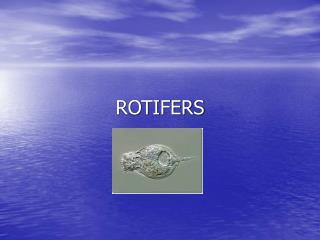 ROTIFERS
