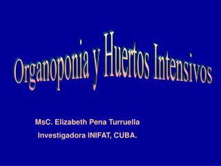 Organoponia y Huertos Intensivos