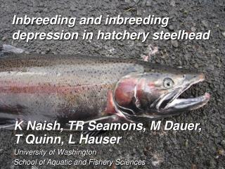 Inbreeding and inbreeding depression in hatchery steelhead