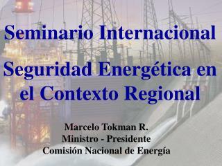 Sector Energ tico Chile