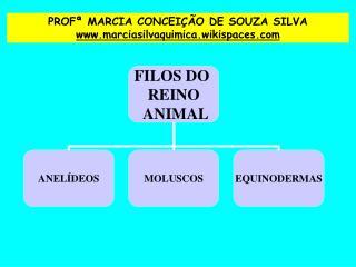 PROF  MARCIA CONCEI  O DE SOUZA SILVA marciasilvaquimica.wikispaces