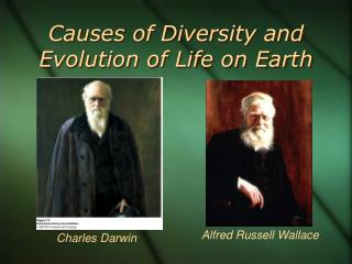Causes of Diversity and Evolution of Life on Earth