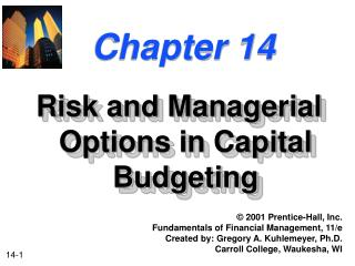 Risk and Managerial Options in Capital Budgeting
