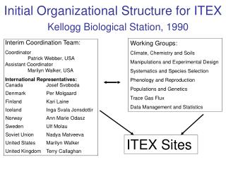 Initial Organizational Structure for ITEX