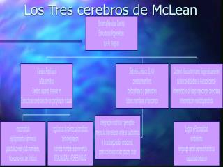 Los Tres cerebros de McLean
