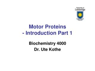 Motor Proteins - Introduction Part 1