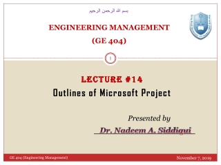 MS Project 2010 Managing Project Details