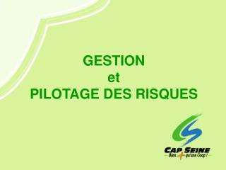 GESTION et PILOTAGE DES RISQUES