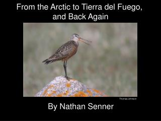 From the Arctic to Tierra del Fuego,  and Back Again
