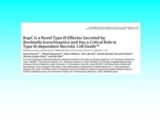 Le pouvoir pathog ne de la bact rie  Bordetella bronchiseptica