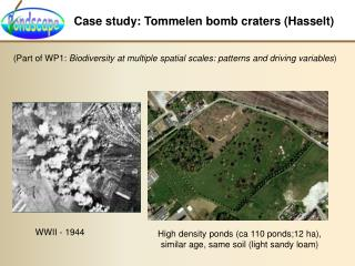 Case study: Tommelen bomb craters Hasselt
