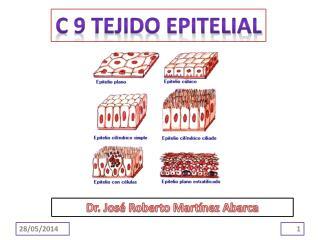C 9 TEJIDO EPITELIAL