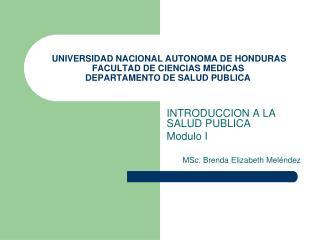UNIVERSIDAD NACIONAL AUTONOMA DE HONDURAS FACULTAD DE CIENCIAS MEDICAS DEPARTAMENTO DE SALUD PUBLICA