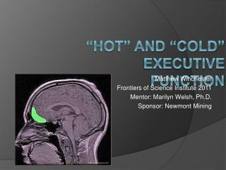 Hot  and  Cold  executive Function