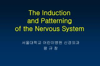 The Induction and Patterning  of the Nervous System