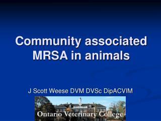 Community associated MRSA in animals