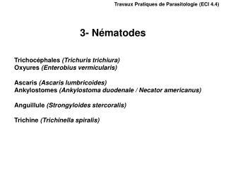 Travaux Pratiques de Parasitologie ECI 4.4