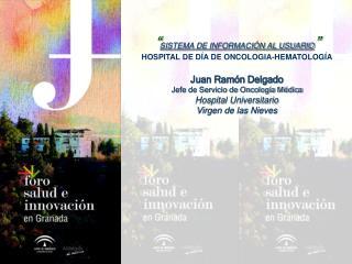 SISTEMA DE INFORMACI N AL USUARIO  HOSPITAL DE D A DE ONCOLOGIA-HEMATOLOG A  Juan Ram n Delgado Jefe de Servicio de Onc