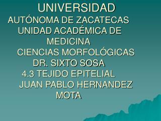UNIVERSIDAD AUT NOMA DE ZACATECAS  UNIDAD ACAD MICA DE MEDICINA       CIENCIAS MORFOL GICAS DR. SIXTO SOSA  4.3 TEJIDO E