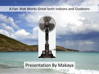 Best Fan for Outdoor and Home use