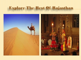 Activities to Perform During Rajasthan Tour