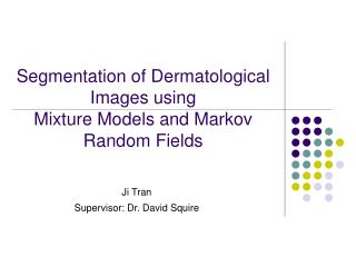Segmentation of Dermatological Images using Mixture Models and Markov Random Fields