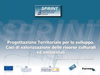 Progettazione Territoriale per lo sviluppo.  Casi di valorizzazione delle risorse culturali ed ambientali      a cura di