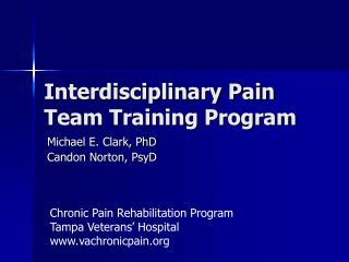 Interdisciplinary Pain Team Training Program