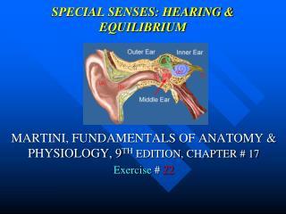 SPECIAL SENSES: HEARING  EQUILIBRIUM